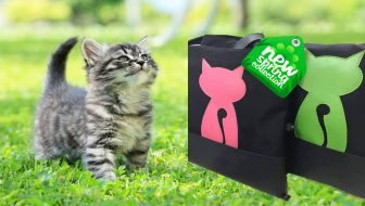 New Spring Kitten Tote Giveaway