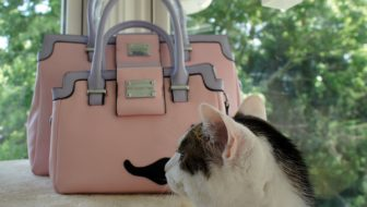 The Mini Pretty in Pink Handbag.  Your Thoughts?