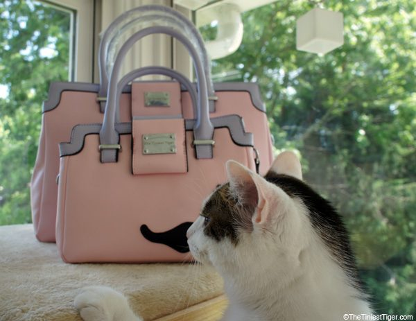 Annie with Pretty in Pink Handbags