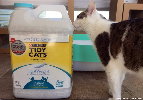 Tidy Cats Lightweight with Ammonia Blocker