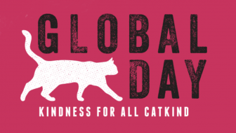 Kindness For All CatKind  #GlobalCatDay