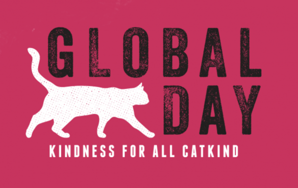 Global Cat Day Image