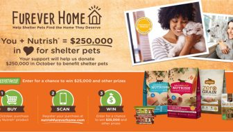 Nutrish Donates $250,000 To Shelter Pets! You Could Win $25,000