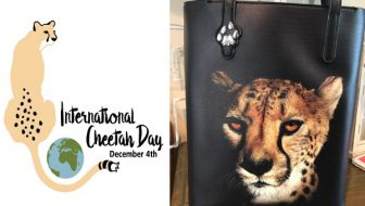 International Cheetah Day  Big Cat Tote Giveaway