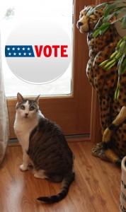 Vote Bad Kitty