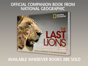 The Last Lions Official Companion to the Motion Picture