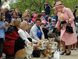 Gracey, The Queen and the Corgis