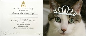Royal Wedding Invitation for Gracey, The Tiniest Tiger