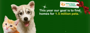 Iams Home 4 the Holidays banner
