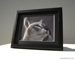 LIFEFORM3D Cat Photo