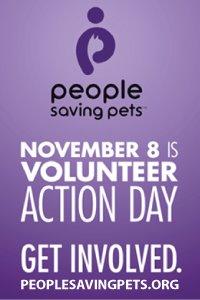 Volunteer Action Day
