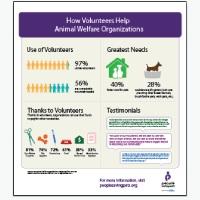 How Volunteers Help