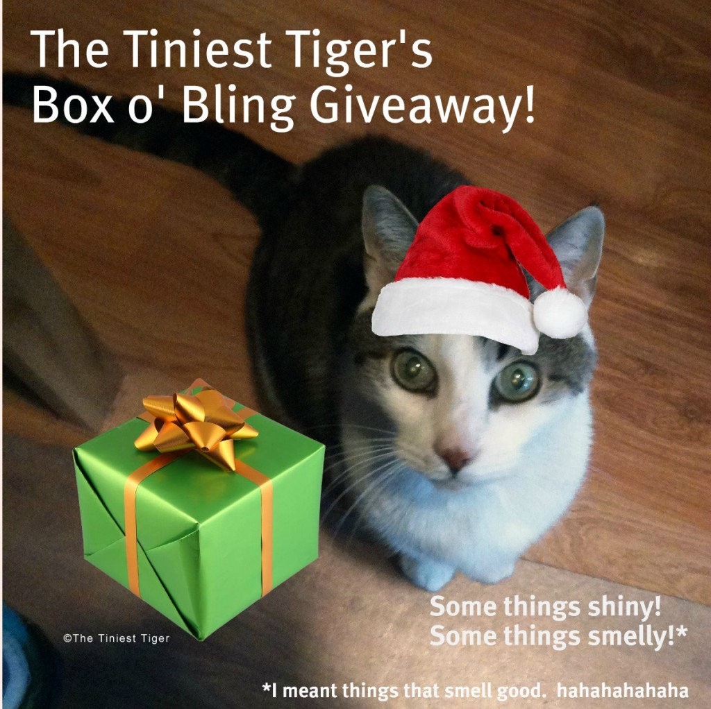 Gracey, The Tiniest Tiger Box o' Bling Giveaway