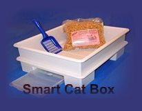 Smart Cat Box Inventor Chats with The Tiniest Tiger