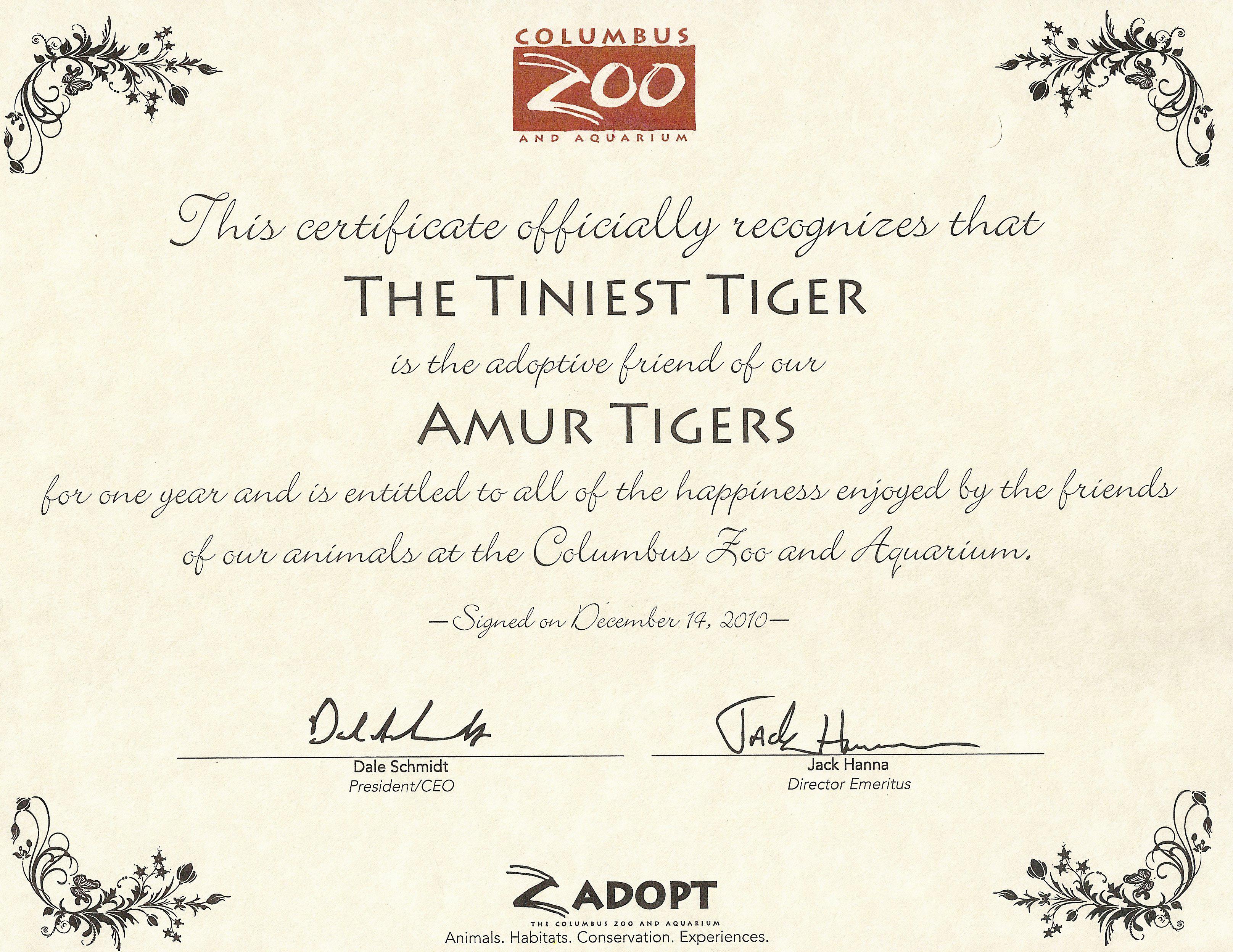 Columbus Zoo's Amur Tigers