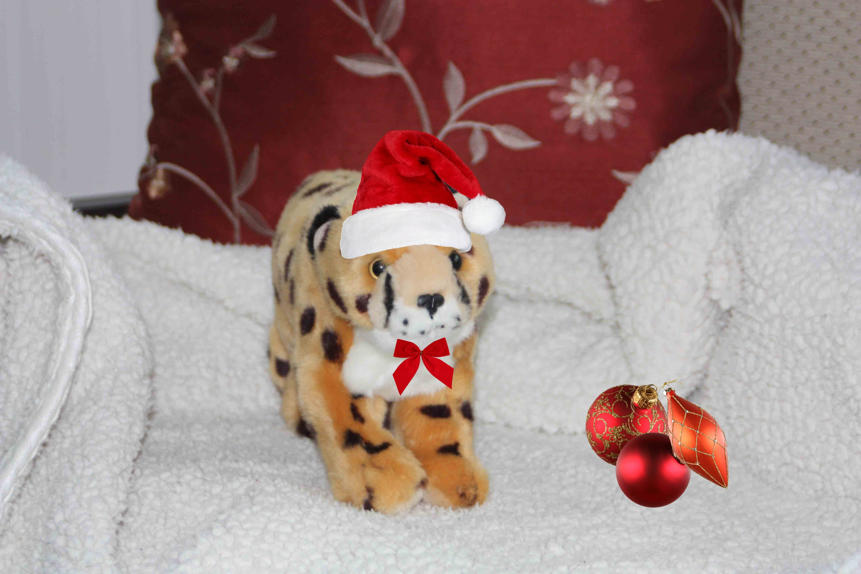 The Tiniest Tiger's 9 (now it is 3) Days of Christmas!