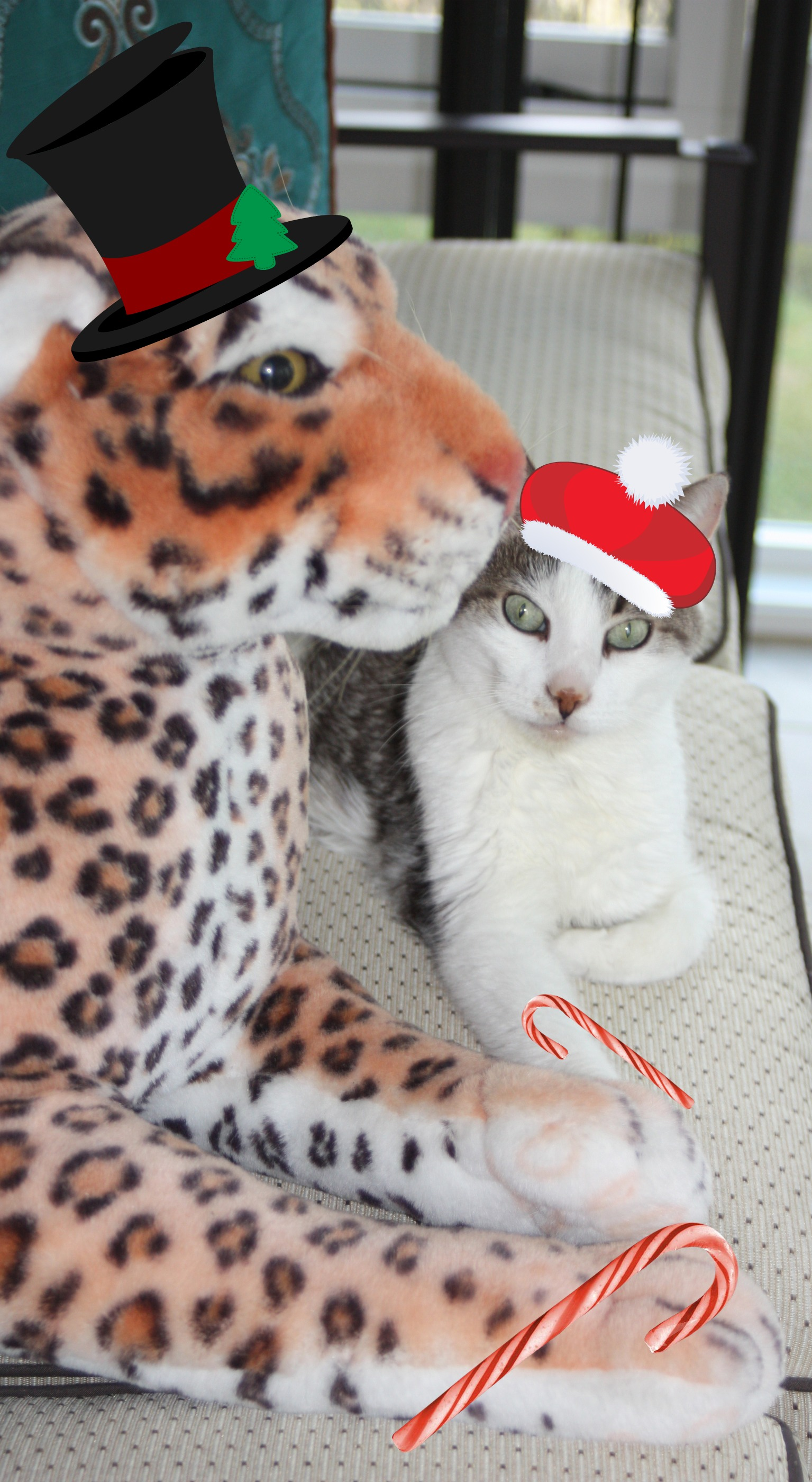 The Tiniest Tiger's 9 Days of Christmas!