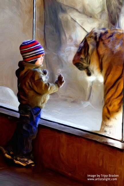 The Tiniest Tiger's Christmas Wish