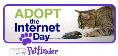 Adopt the Internet day!