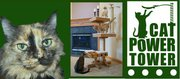 Cat Power Tower! The Ultimate Cat Entertainment Center