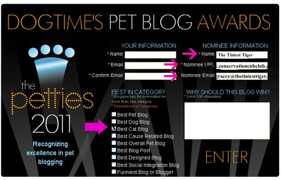 I Need Your Help to  Win a Pettie for Best Cat Blog