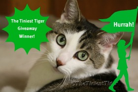 The Tiniest Tiger Giveaway Winner Image