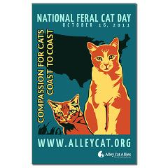 Compassion For Cats Coast to Coast  National Feral Cat Day