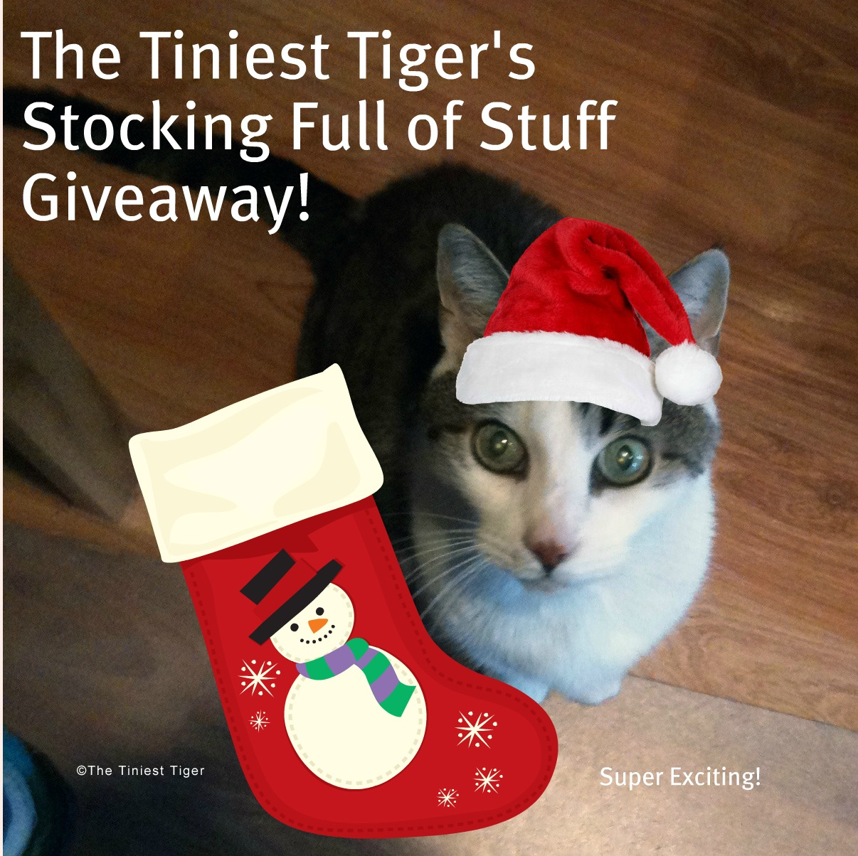 Cat Stocking Full of Stuff Giveaway!