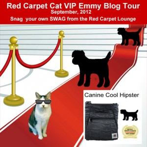 Red Carpet Cat VIP Dog Tour