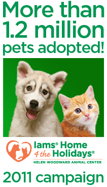 Iams Home 4 the Holidays Finds Homes for 1.2 Million Pets