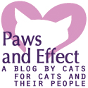 Paws and Effect Button