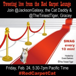 Announcing the #RedCarpetCat Twitter Party!