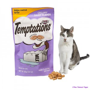 Temptations Treats and Gracey