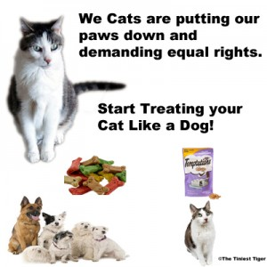 Temptations Cat Treats are for Cats!