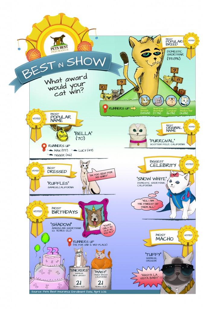 PetsBest Cat Infographic