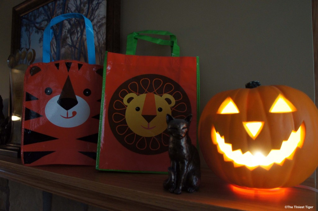 Tiger and Lion Trick or Treat Bags