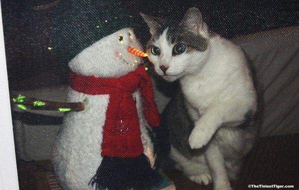 Welcome Home Snowman