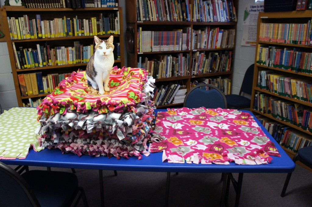 Flat Gracey with Pennies for Pets Blankets