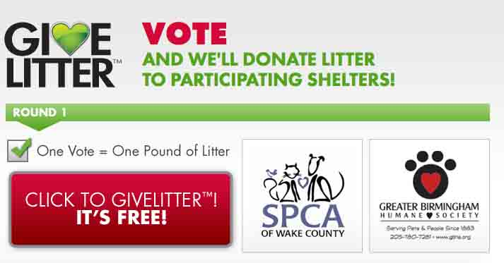 GiveLitter  Your Vote Donates Litter to Shelters