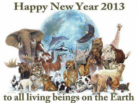 Happy New Year 2013 Global Awakening