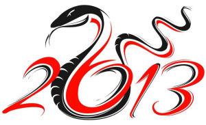 Year of the Snake 2013 image