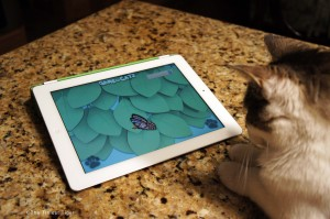 Gracey, The Tiniest Tiger with iPad