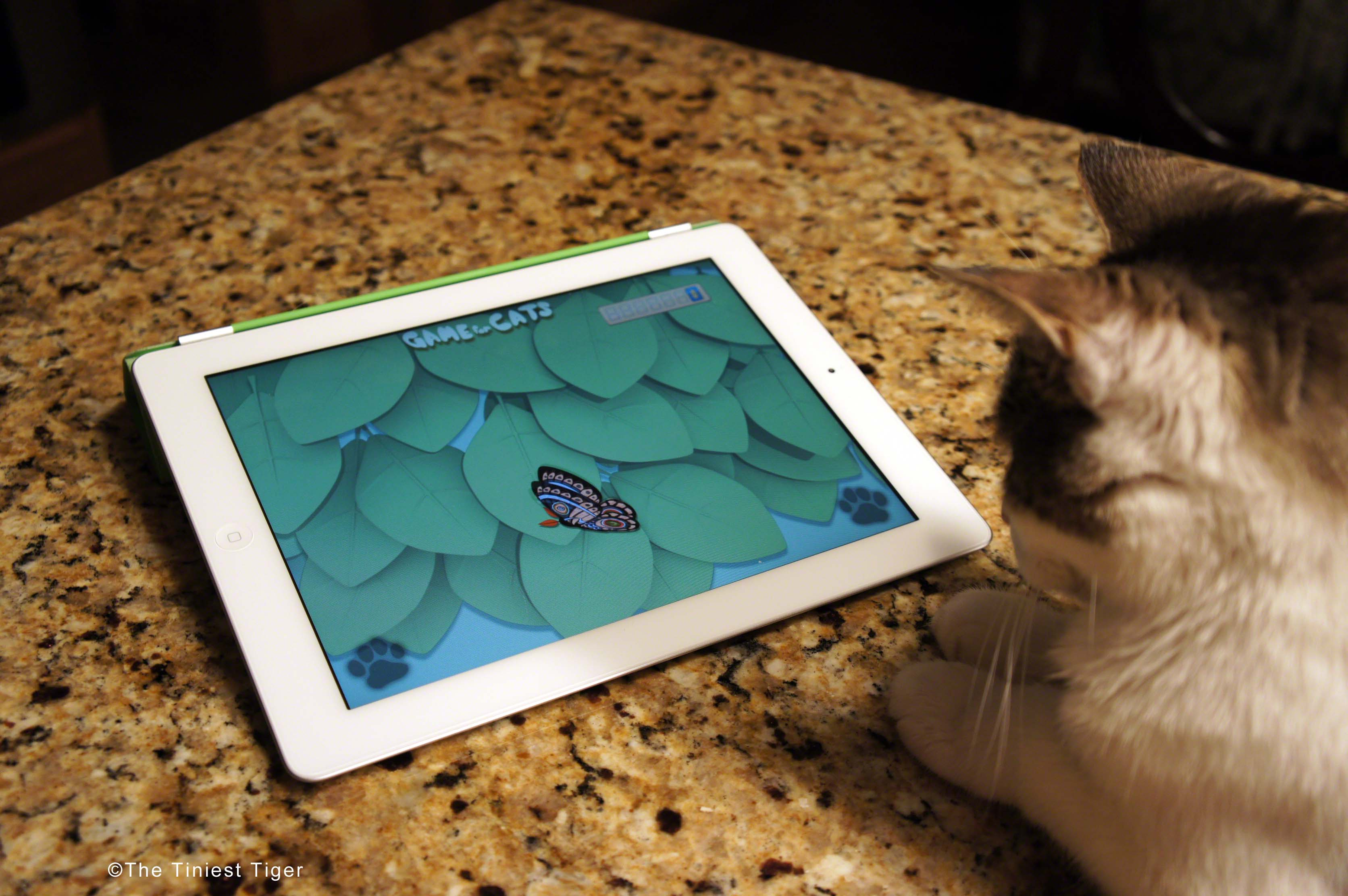 Cat Bored?  Friskies has an App for That!