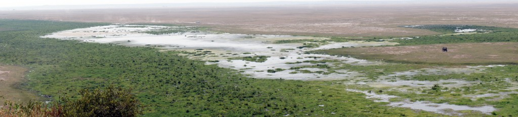 Amboseli Panorama
