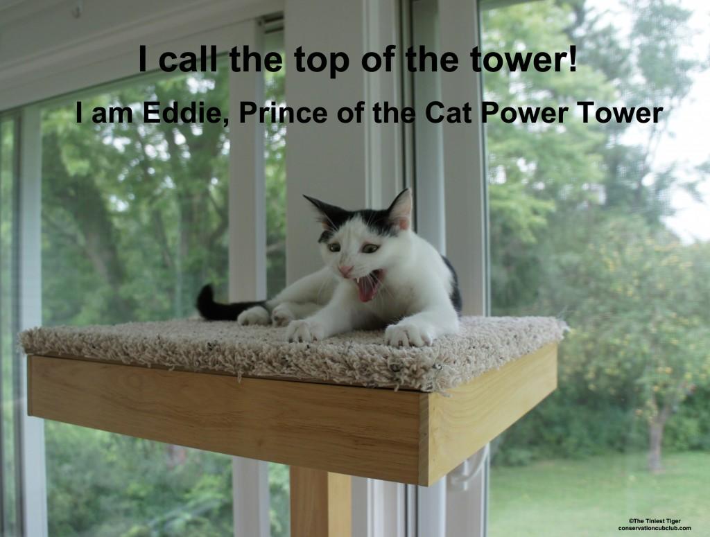 Eddie Prince of CPT