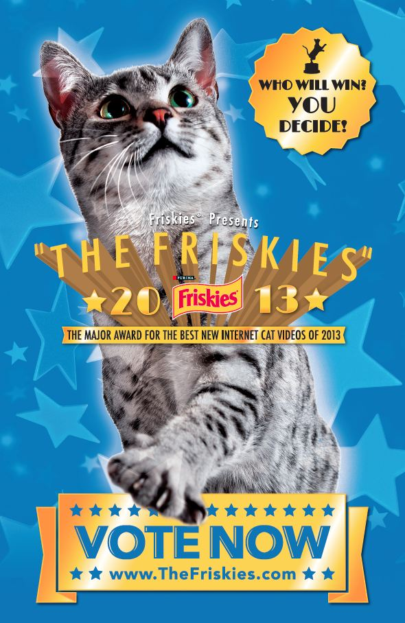The Tiniest Tiger is a Finalist in The Friskies 2013