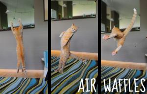 Air Waffles Triple Screen