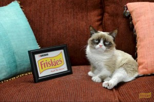 The Friskies, Grumpy Cat