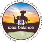 Ideal Balance Image