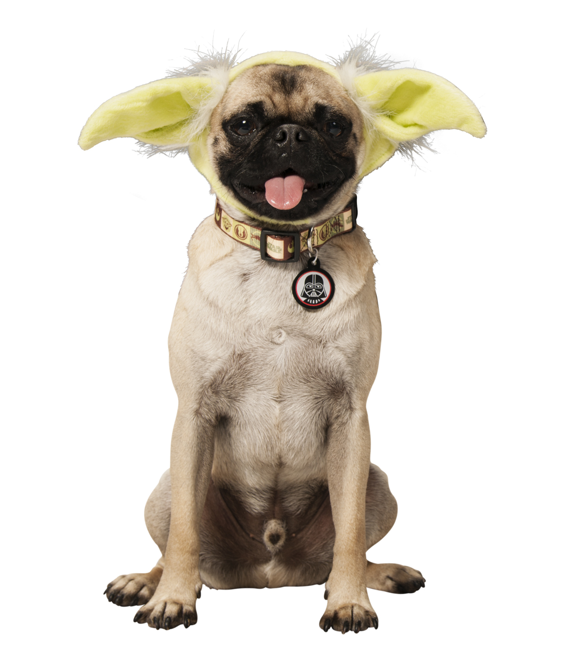 Petco Star Wars Pets Unleashed at BarkWorld & Our Giveaway